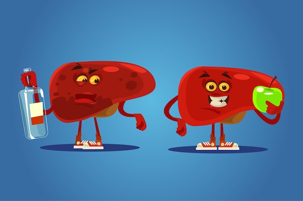 Healthy and unhealthy liver characters.   cartoon