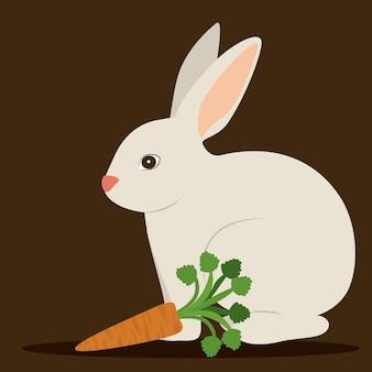 Healty lifestyle illustration