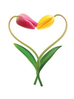 발렌타인 데이를위한 두 개의 튤립 아이디어에서 심장