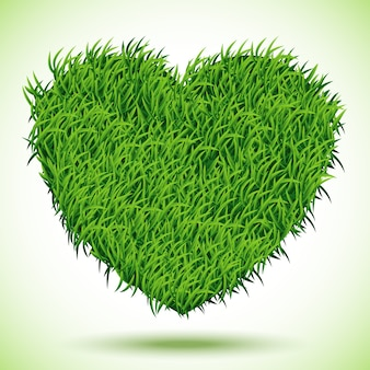 Heart green grass,  illustration