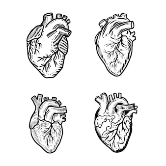 Heart human icon set