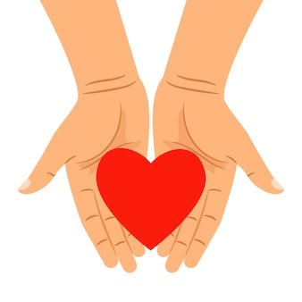 Сердце в руках на белом
