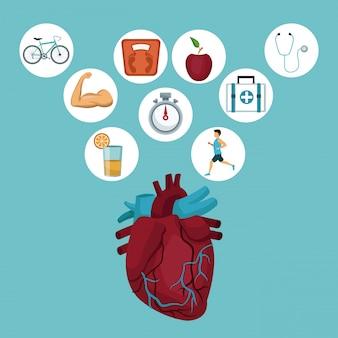 Сердечный орган и значки в круговой рамке с элементами здоровья