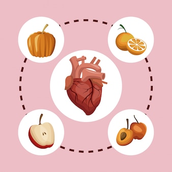 Heart organ with fruits healthy food around