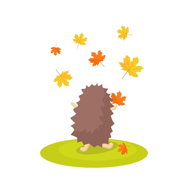 The hedgehog stands with his back and throws autumn leaves in the air. vector cartoon illustration.