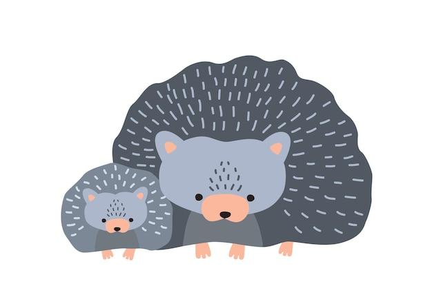 흰색 배경에 고립 된 아기와 고슴도치입니다. 재미있는 야생 야행성 숲 동물의 귀여운 가족입니다. 영링, 엄마와 아이 또는 자손이 있는 부모. 플랫 만화 다채로운 벡터 일러스트 레이 션.