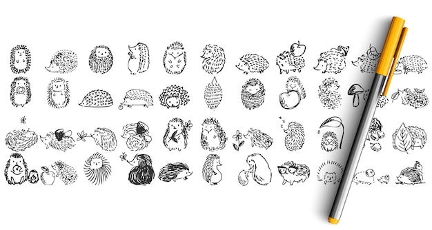 Hedgehogs doolde set. collection of pencil pen ink hand drawn sketches. forest prickly animal .