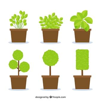 평평한 디자인의 울타리와 식물