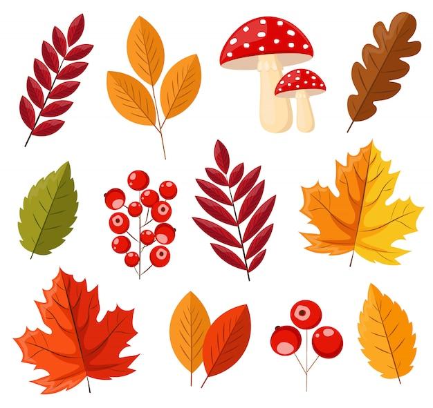 Здравствуйте, осень, осенние листья, красные ягоды и грибы плоские, цветные листья, изолированные набор, элементы иллюстрации осени