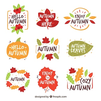 Hello autumn badge collection with leaves