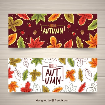Hello autumn banner set with leaves