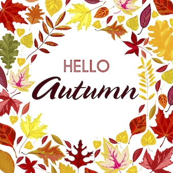 마른 단풍과 안녕하세요 가을 배너