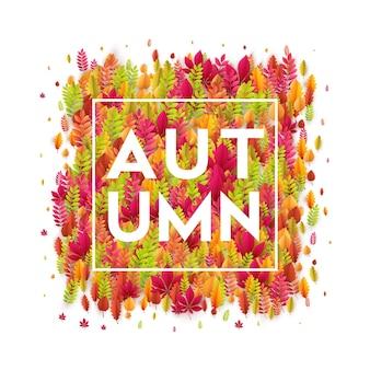 안녕하세요 가을입니다. 다른 색깔의 단풍 배경. 벡터 일러스트 레이 션 eps10
