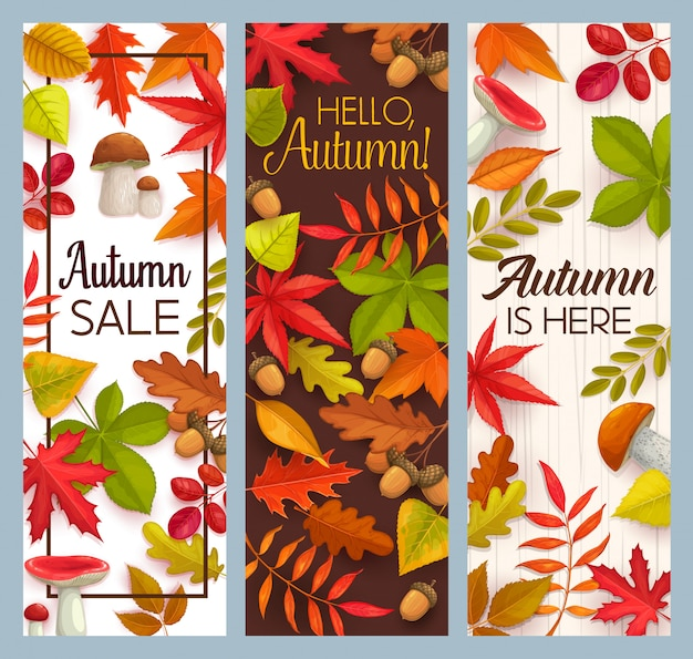 Hello autumn and fall seasonal sale  banners