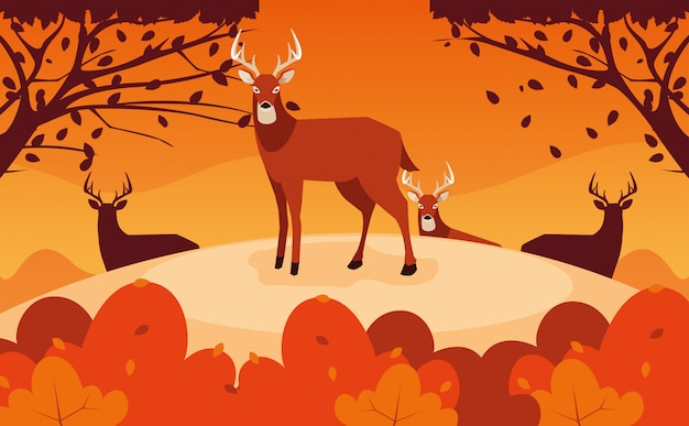 Hello autumn illustration with group deer in landscape
