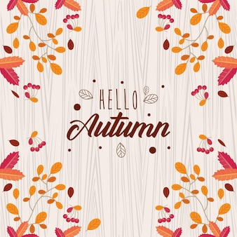 안녕하세요 가을잎님