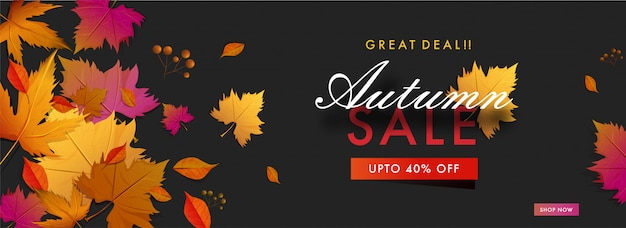 Hello autumn sale banner.