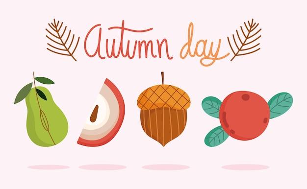 Здравствуйте, осень, сезон урожая фруктов, яблок, груш, желудей, ягод.