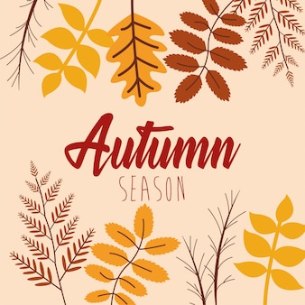 Hello autumn season leaves and calligraphy