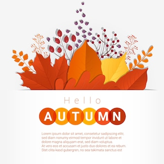 Hello autumn with colorful leaves and fruits background