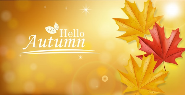 Hello autumn with leaves falling