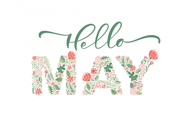 Hello may handwritten calligraphy lettering text.