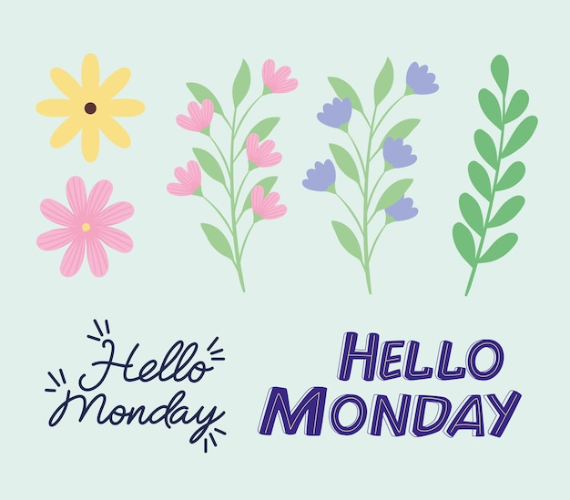 Hello monday and flowers