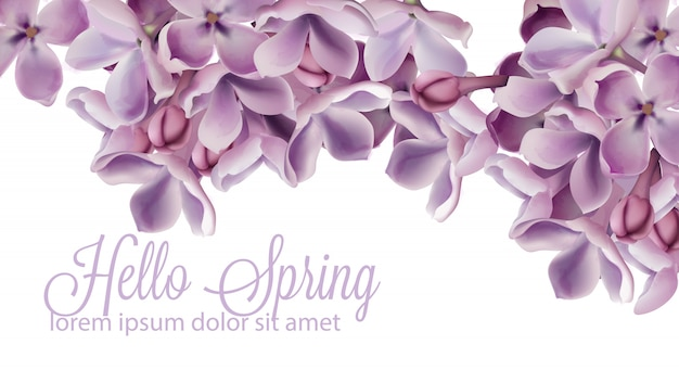 Hello spring background with purple lilac flowers watercolor