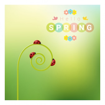 Hello spring background with red ladybugs