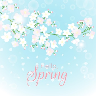 Hello spring background with spring flowers