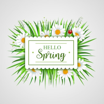 Hello spring card with grass frame