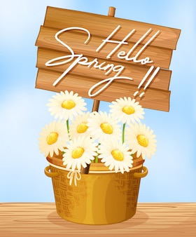 Hello spring flowers in bucket concept