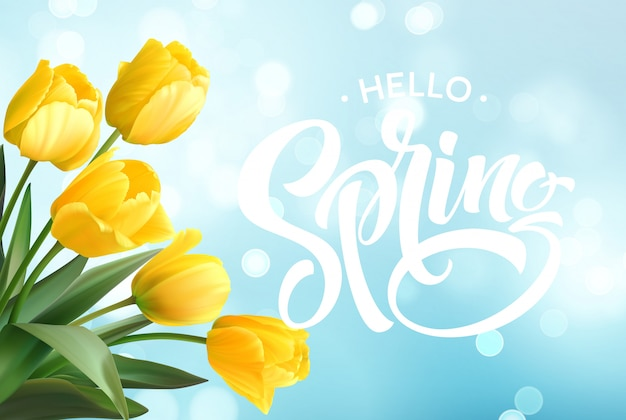 Hello spring hand lettering with tulip flower.
