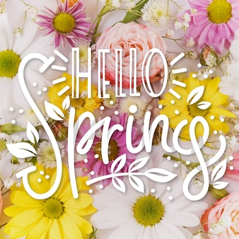 Hello spring lettering on colorful flowers