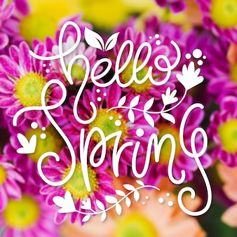 Hello spring lettering on colorful photo