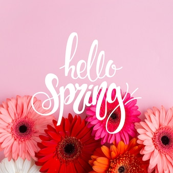 Hello spring lettering with photo concept