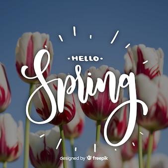 こんにちは春レタリング写真