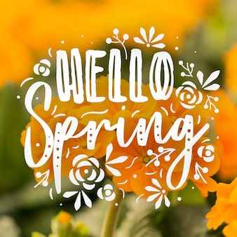 Hello spring lettering with photo