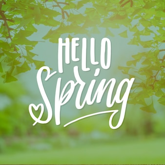 Hello spring lettering with vegetation photo