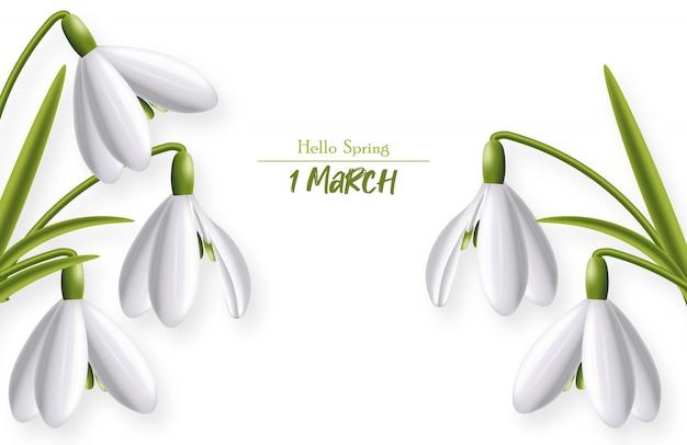 Hello spring, march snowdrop realistic spring symbol   illustration