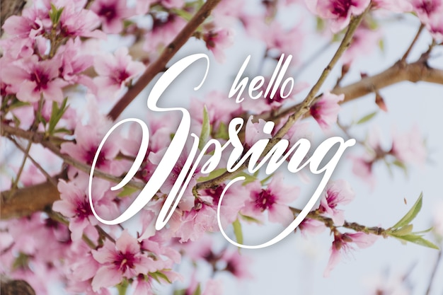 Hello spring sale lettering with photo