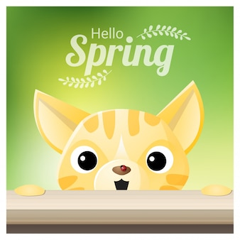 Hello spring season background with a cat