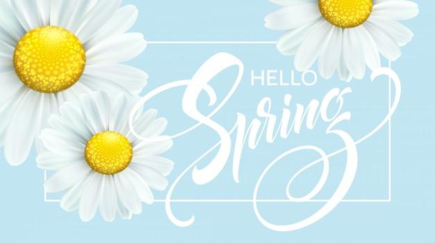 Каллиграфическая надпись hello spring с весенним цветком - цветущей белой ромашкой.