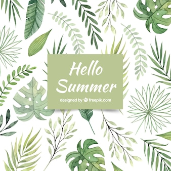 Hello summer background with different plants in watercolor style