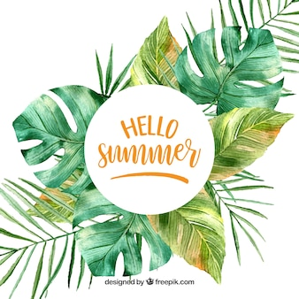 Hello summer background with leaves in watercolor style