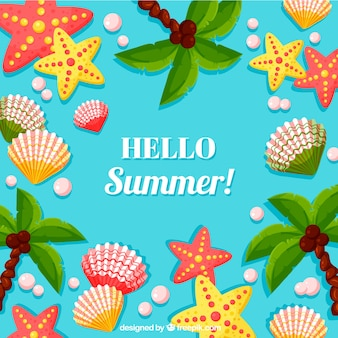 Hello summer background with sea shells and starfishes