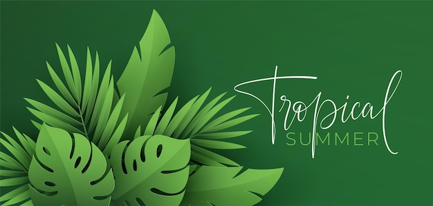 Hello summer banner. paper-cut green tropical leaves of monstera