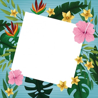 Hello summer card on wooden background