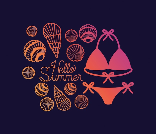 Hello summer design with shells