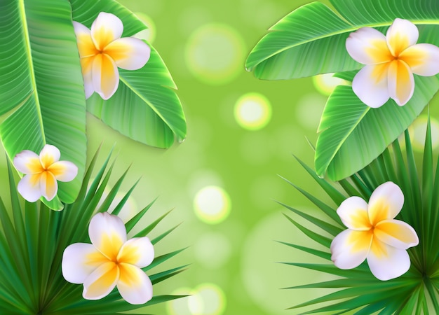 Hello summer natural floral background